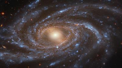 210308_spiralgalaxy_top.jpg